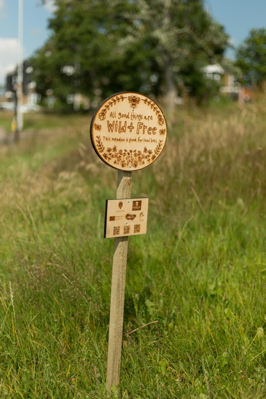 Wildflower meadow sign designed by Genevieve Stewart Image Credit_Ray Goodwin