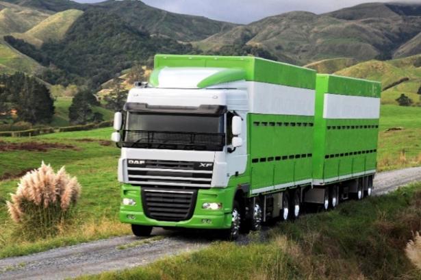 DAF XF Truck Brasil