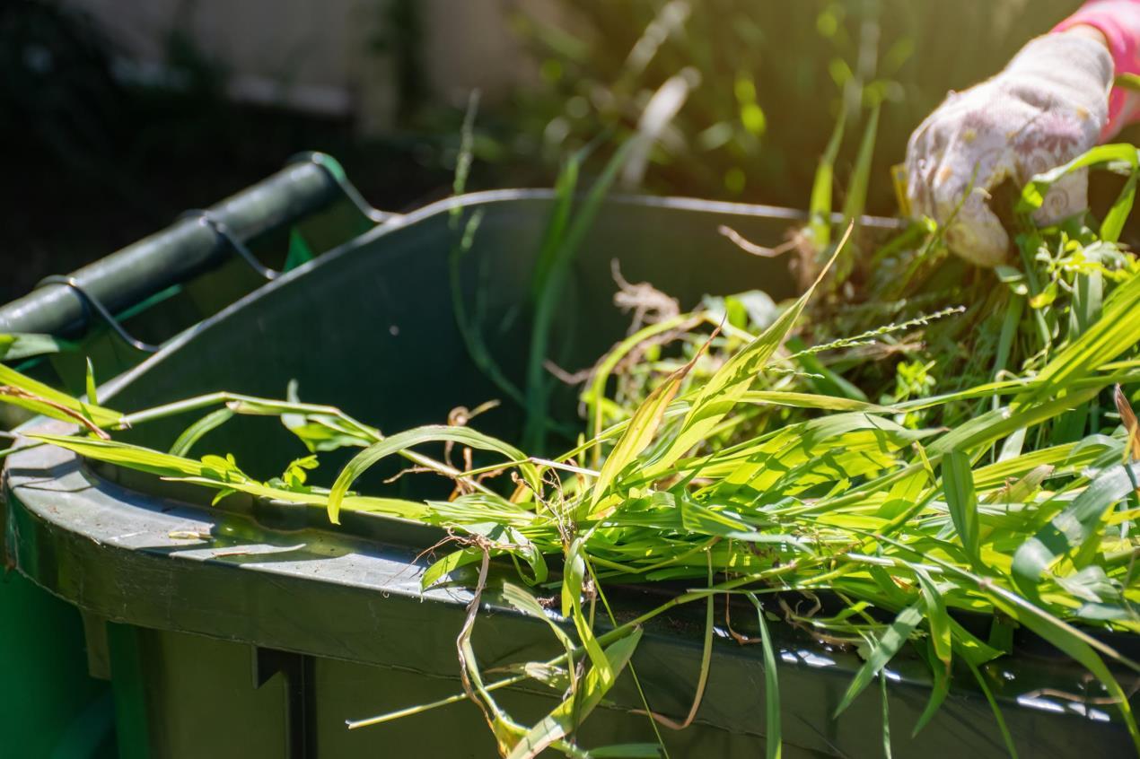 Garden waste - Stock (2)