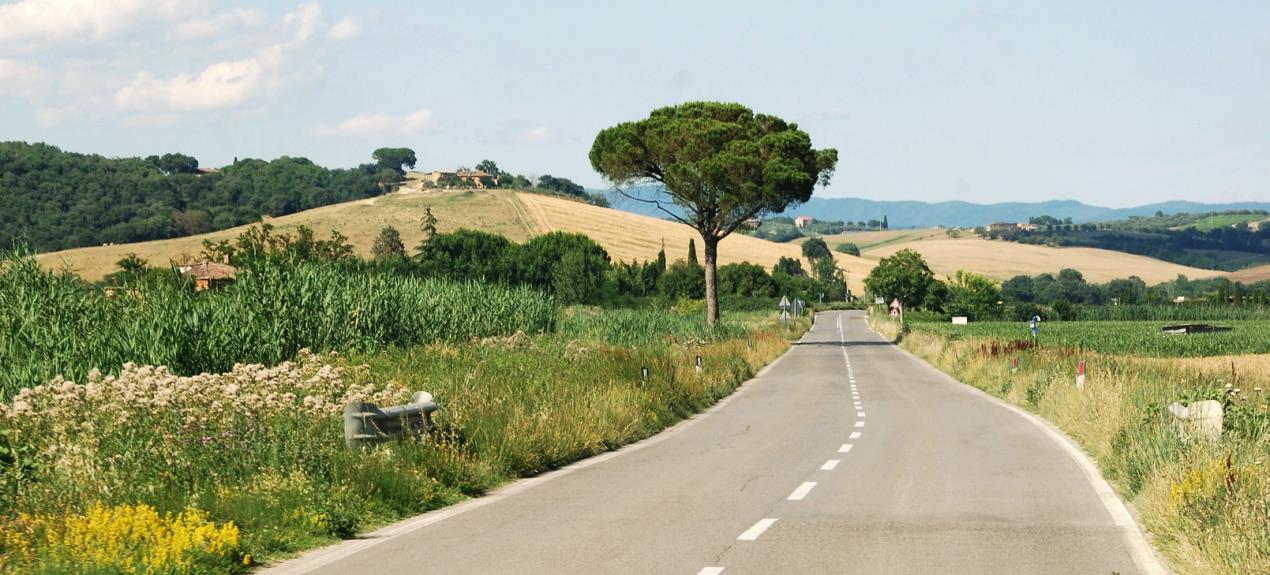 Tuscan Road @ TMR